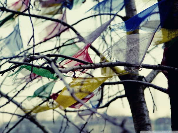 wind_blowing-wallpaper-1024x768